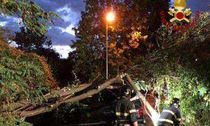 Maltempo: la provincia di Prato la più colpita dalla tempesta