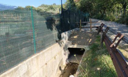 Più sicurezza idraulica per l'abitato di Carraia