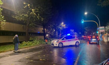 Maltempo, alberi caduti per le forti raffiche: viali chiusi a Firenze
