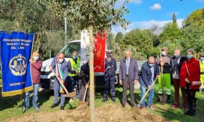Il Comune di Montemurlo pianta un albero in ricordo di tutte le vittime sul lavoro con un pensiero particolare a Luana, Sabri e Giuseppe
