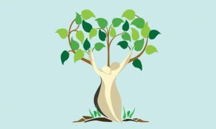 """AVO Firenze, piantumazione di cinque alberi donati da Vivai Vannucci: """"Potenziare il volontariato sul territorio perché i bisogno delle persone aumentano"""""""